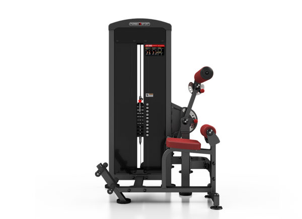 MP-U220 2-In-1 Abdominal - Back Extension